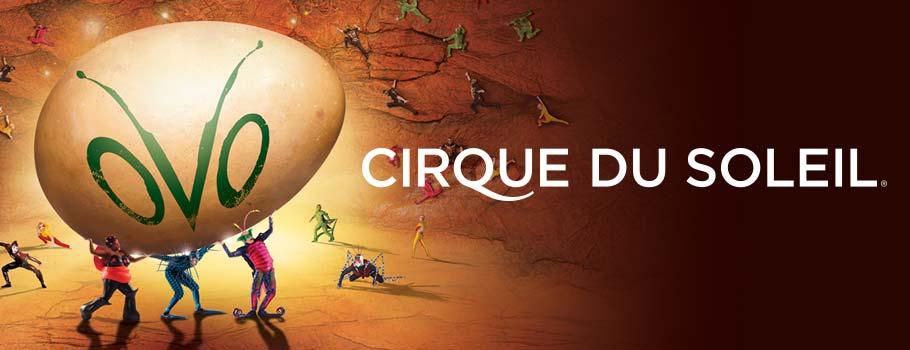 Cirque_du_Soleil_OVO_BC_Event_Feature_910x350.jpg