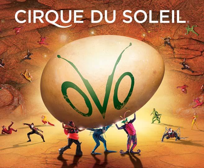 Cirque_du_Soleil_OVO_BC_Thumbnail_656x450.jpg