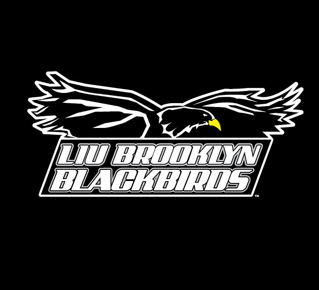 LIU-Brooklyn-656x596.png