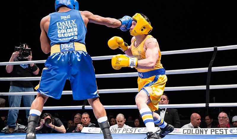 dn-boxing-01.jpg